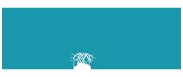 novamedic logo